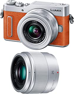 Panasonic 无反相机单反相机 ルミックス GF90双镜头标准变焦镜头 / 定焦镜头附送