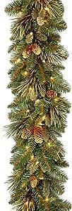 """国家树 2.74 m x 25.40 cm Carolina Pine Garland 27 个植树锥体 绿色 9' x 10"""" CAP3-306-9A"""