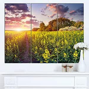 """Designart MT14577-271 日落时的梦幻黄色田 - 大景观艺术光面金属墙壁艺术 黄色 36x28"""" - 3 Panels MT14577-3P"""