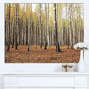 """Designart MT13974-271 美丽鸟类森林摄影 - 现代森林光面金属墙壁艺术,绿色,48x28 绿色 36x28"""" - 3 Panels MT13974-3P"""