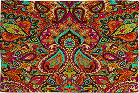 DENY Designs Aimee St. Hill Paisley Orange Woven Rug, 2 by 3-Feet
