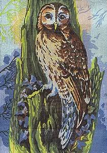 Collection D'Art 猫头鹰挂毯套装,* 纯棉,多色,38 x 25 x 0.5 厘米