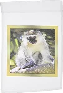 苏珊布朗设计动物主题–非洲猴子–旗帜 12 x 18 inch Garden Flag