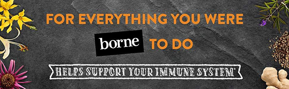Our Story, Airborne, Borne to do, Helps the immune system