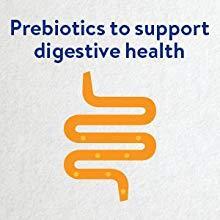 prebiotics,support,digestive health,