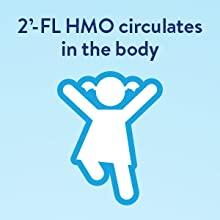 2'-FL HMO circulates