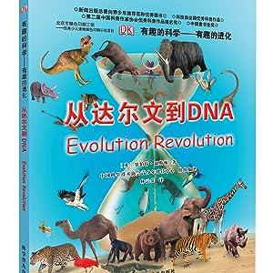 有趣的进化